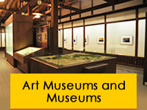 Art Museums and Museums