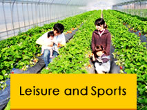 Leisure and Sports