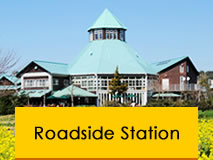 Roadside Station